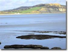 A view of Charmouth from Lyme